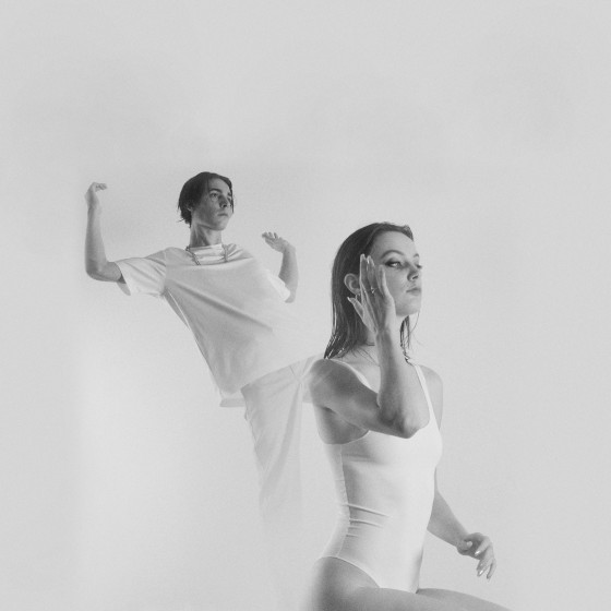 Image the-pirouettes